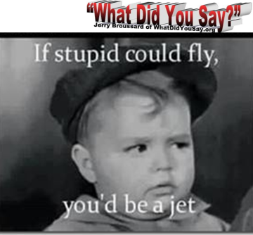 if-stupid-could-fly
